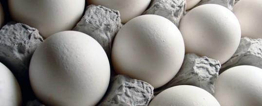 Worshipping on Eggshells